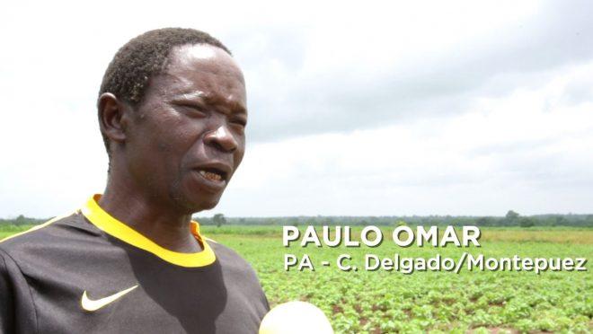 Depoimento de Paulo Omar, Pequeno Agricultor de Cabo Delgado/Montepuez